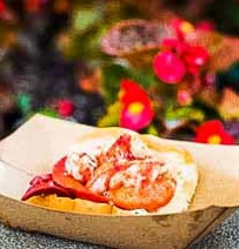 Lobster Roll {Hops & Barley Food and Wine Festival}